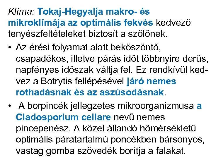 Klíma: Tokaj-Hegyalja makro- és mikroklímája az optimális fekvés kedvező tenyészfeltételeket biztosít a szőlőnek. •