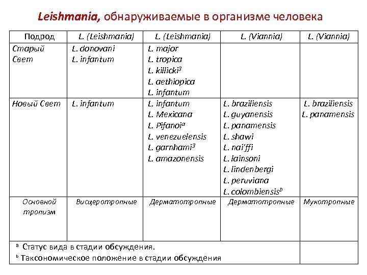 Leishmania, обнаруживаемые в организме человека Подрод Старый Свет L. (Leishmania) L. donovani L. infantum