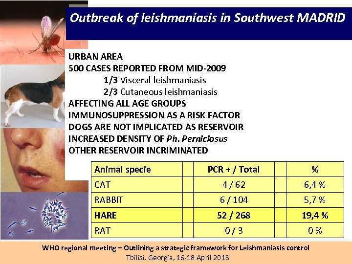 Outbreak of leishmaniasis in Southwest MADRID URBAN AREA 500 CASES REPORTED FROM MID-2009 1/3