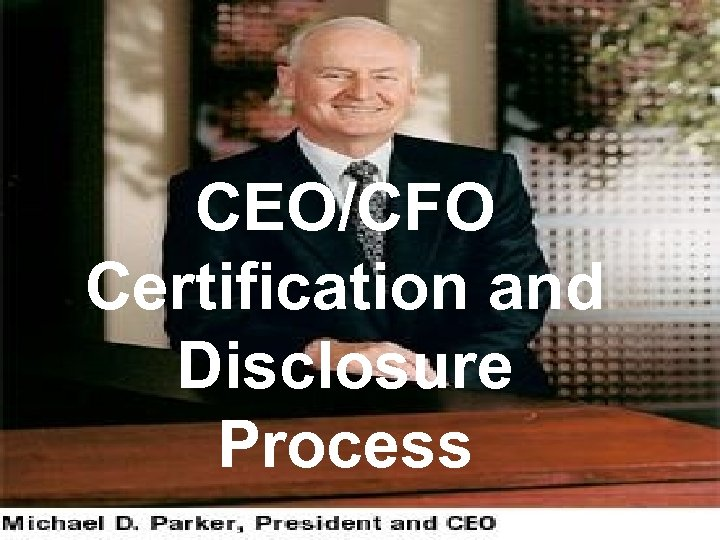CEO/CFO Certification and Disclosure Process