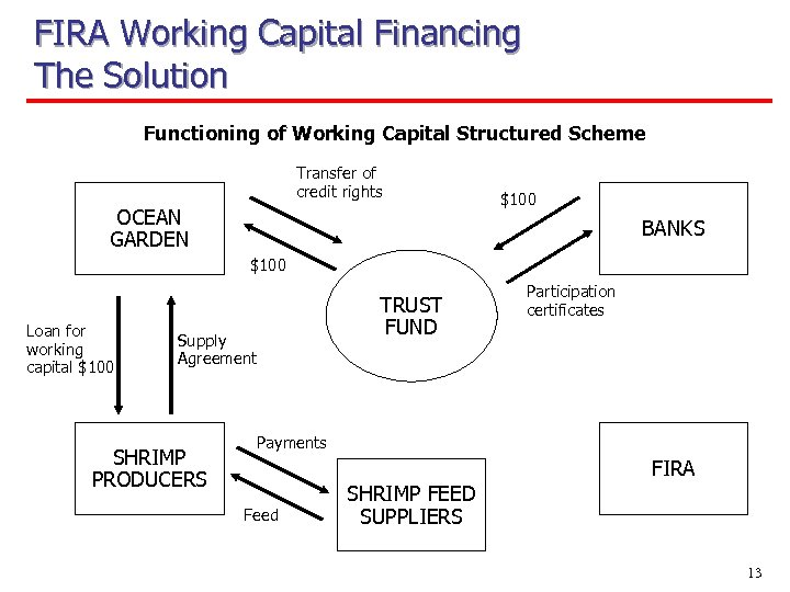 FIRA Working Capital Financing The Solution Functioning of Working Capital Structured Scheme Transfer of