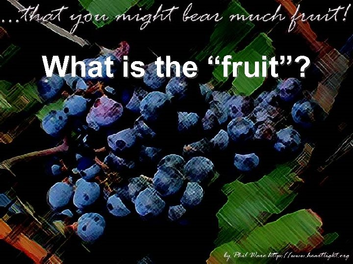 """What is the """"fruit""""?"""