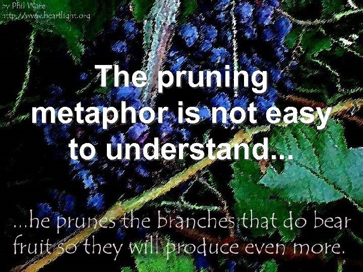 The pruning metaphor is not easy to understand. . .