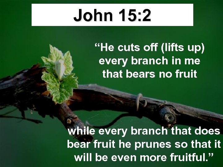 """John 15: 2 """"He cuts off (lifts up) every branch in me that bears"""