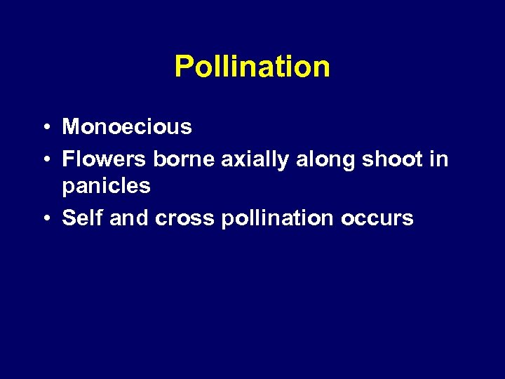 Pollination • Monoecious • Flowers borne axially along shoot in panicles • Self and