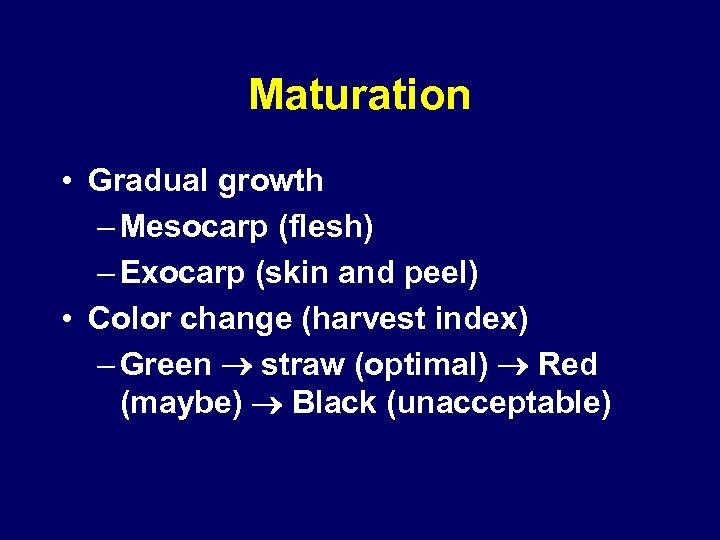 Maturation • Gradual growth – Mesocarp (flesh) – Exocarp (skin and peel) • Color