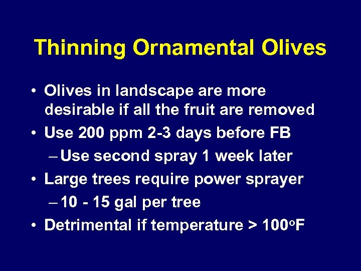 Thinning Ornamental Olives • Olives in landscape are more desirable if all the fruit