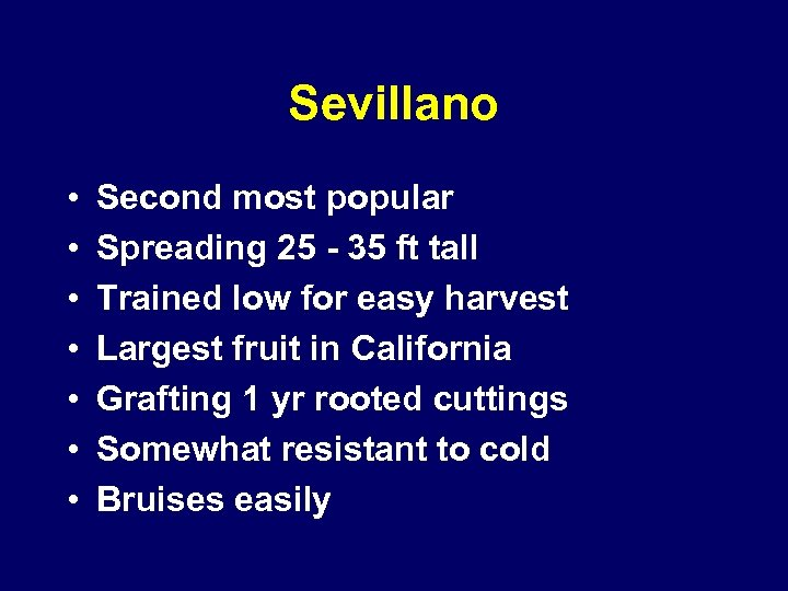 Sevillano • • Second most popular Spreading 25 - 35 ft tall Trained low