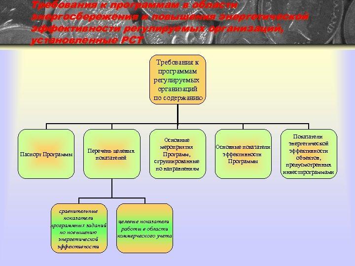 Требования к программам в области энергосбережения и повышения энергетической эффективности регулируемых организаций, установленные РСТ
