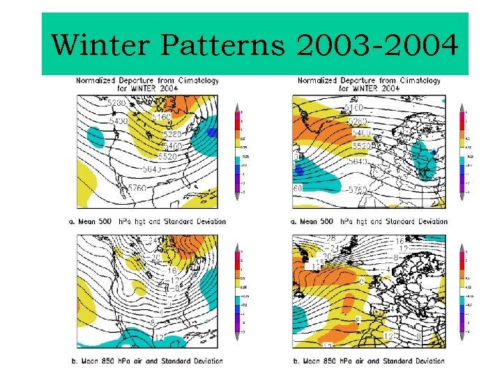 Winter Patterns 2003 -2004