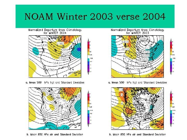 NOAM Winter 2003 verse 2004
