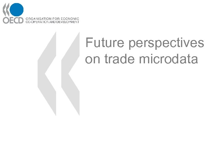 Future perspectives on trade microdata