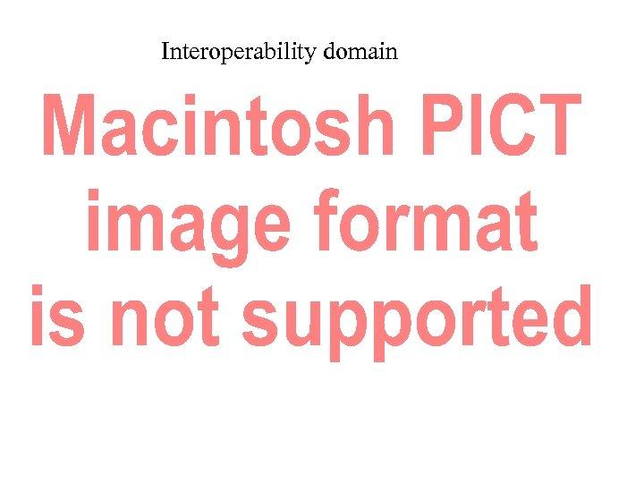 Interoperability domain