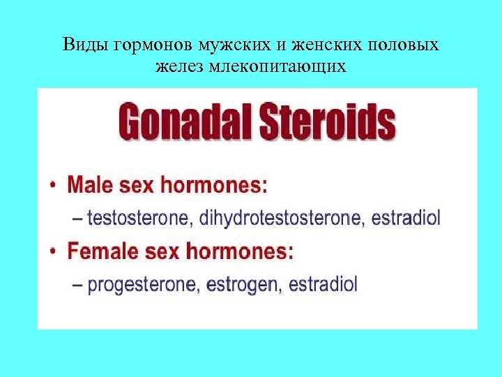 Виды гормонов мужских и женских половых желез млекопитающих