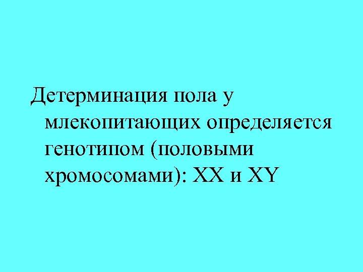 Детерминация пола у млекопитающих определяется генотипом (половыми хромосомами): ХХ и XY