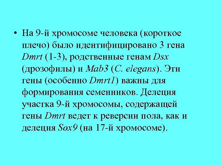 • На 9 -й хромосоме человека (короткое плечо) было идентифицировано 3 гена Dmrt
