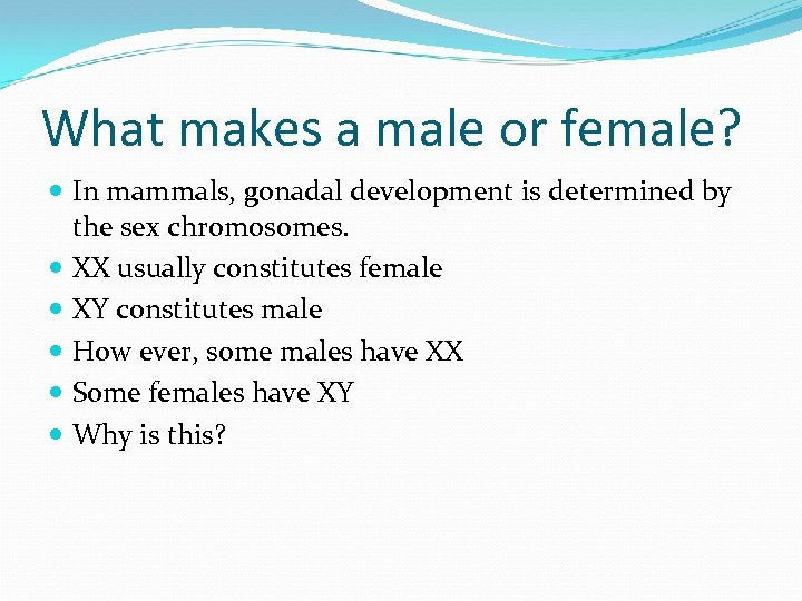What makes a male or female? In mammals, gonadal development is determined by the