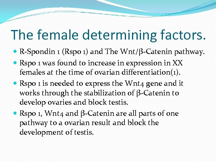 The female determining factors. R-Spondin 1 (Rspo 1) and The Wnt/β-Catenin pathway. Rspo 1