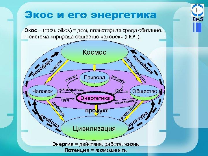 Экос и его энергетика Экос – (греч. oikos) = дом, планетарная среда обитания. =