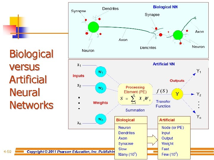 Biological versus Artificial Neural Networks 4 -50 Copyright © 2011 Pearson Education, Inc. Publishing