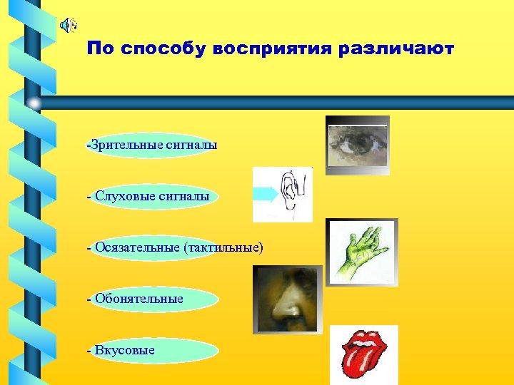 По способу восприятия различают -Зрительные сигналы - Слуховые сигналы - Осязательные (тактильные) - Обонятельные