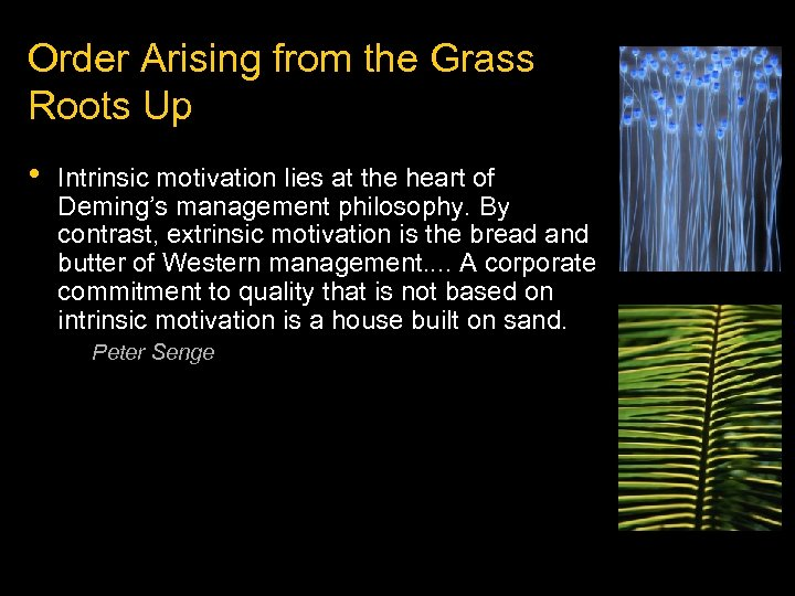 Order Arising from the Grass Roots Up • Intrinsic motivation lies at the heart