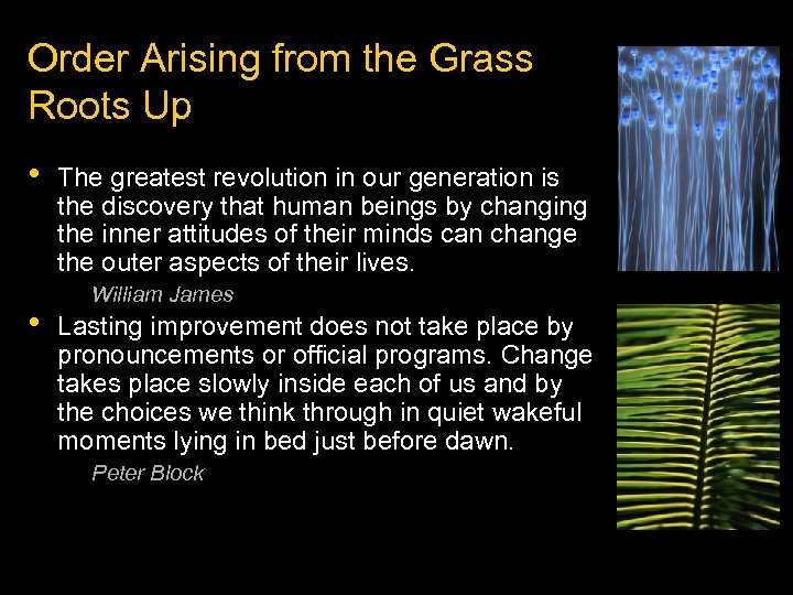 Order Arising from the Grass Roots Up • • The greatest revolution in our