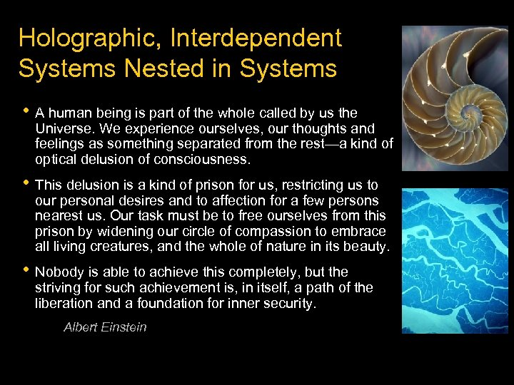 Holographic, Interdependent Systems Nested in Systems • A human being is part of the