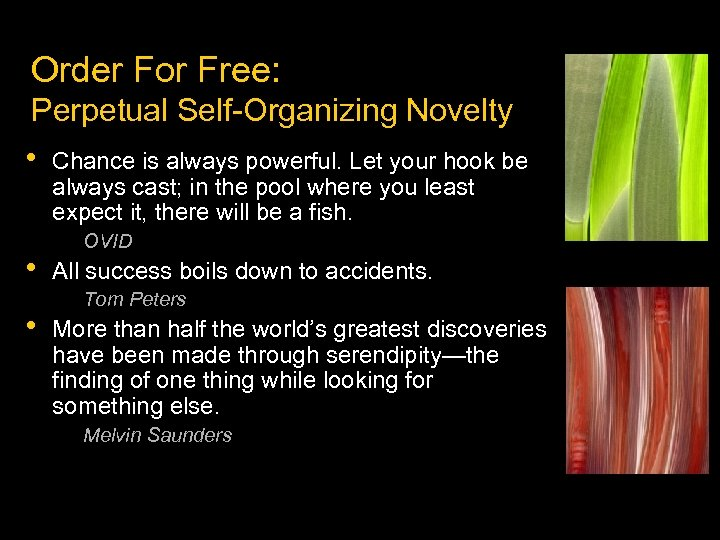 Order For Free: Perpetual Self-Organizing Novelty • • • Chance is always powerful. Let
