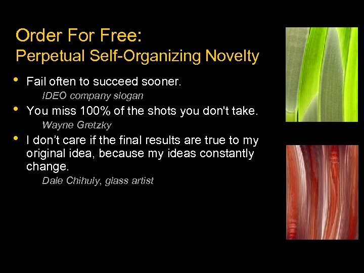 Order For Free: Perpetual Self-Organizing Novelty • • • Fail often to succeed sooner.