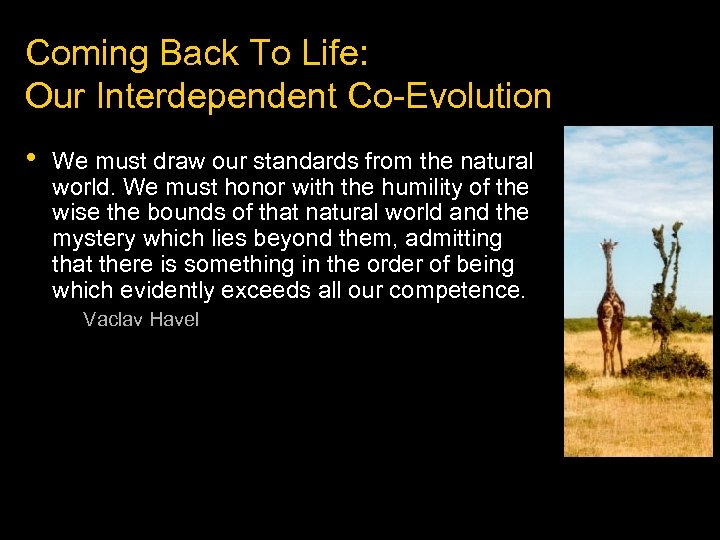 Coming Back To Life: Our Interdependent Co-Evolution • We must draw our standards from