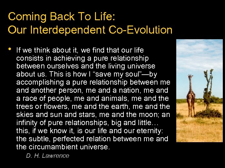 Coming Back To Life: Our Interdependent Co-Evolution • If we think about it, we