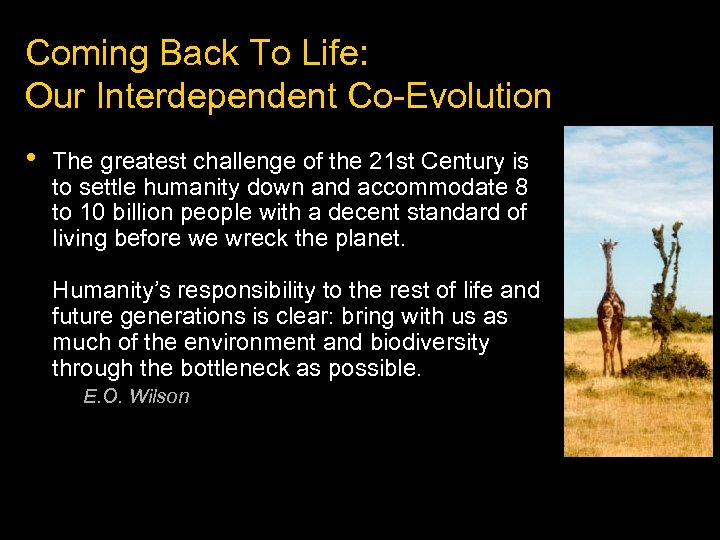 Coming Back To Life: Our Interdependent Co-Evolution • The greatest challenge of the 21