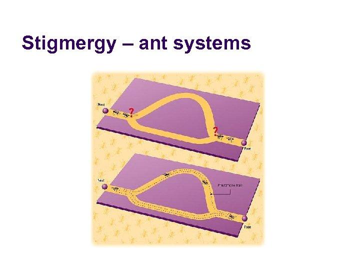 Stigmergy – ant systems
