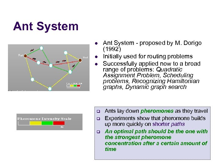 Ant System l l l q q q Ant System - proposed by M.
