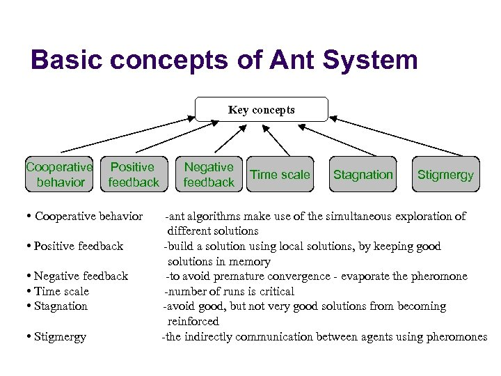 Basic concepts of Ant System Key concepts Cooperative behavior Positive feedback • Cooperative behavior