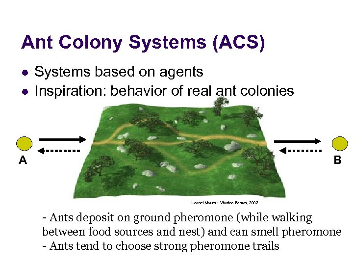 Ant Colony Systems (ACS) l l Systems based on agents Inspiration: behavior of real