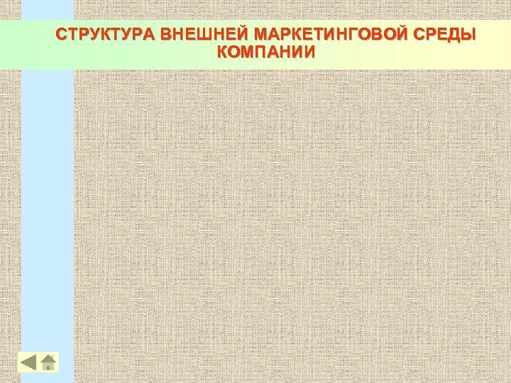 СТРУКТУРА ВНЕШНЕЙ МАРКЕТИНГОВОЙ СРЕДЫ КОМПАНИИ 17