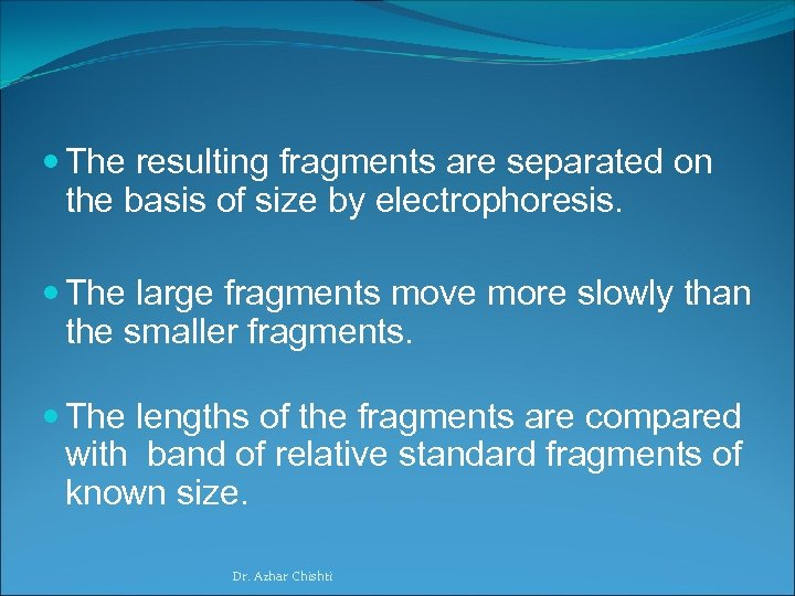The resulting fragments are separated on the basis of size by electrophoresis. The