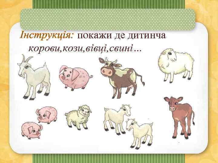 Інструкція: покажи де дитинча корови, кози, вівці, свині…