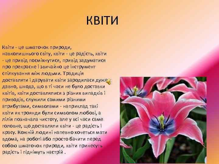 КВІТИ Квіти - це шматочок природи, навколишнього світу, квіти - це радість, квіти
