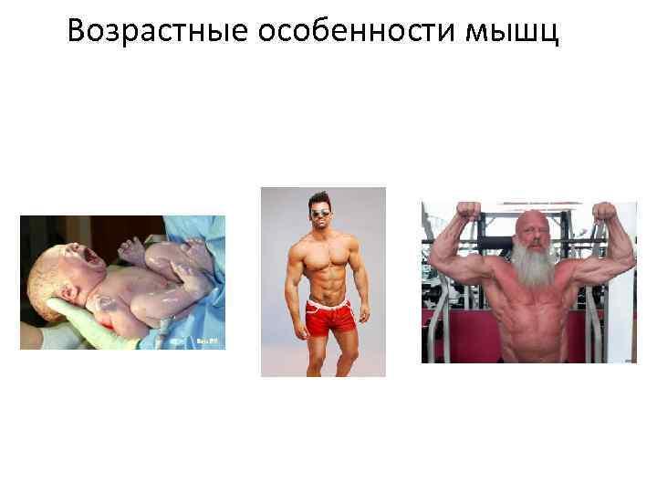 Возрастные особенности мышц