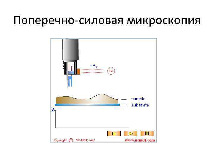 Поперечно-силовая микроскопия
