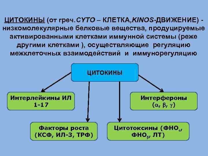 ЦИТОКИНЫ (от греч. CYTO – КЛЕТКА, KINOS-ДВИЖЕНИЕ) низкомолекулярные белковые вещества, продуцируемые активированными клетками иммунной