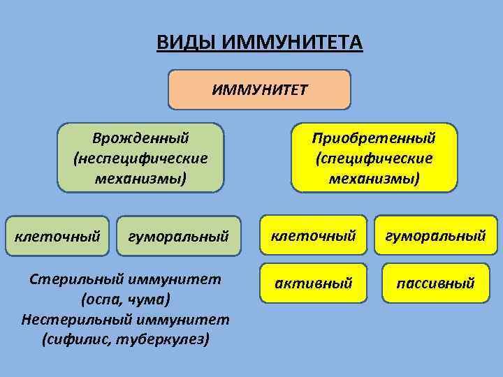 ВИДЫ ИММУНИТЕТА ИММУНИТЕТ Врожденный (неспецифические механизмы) Приобретенный (специфические механизмы) гуморальный клеточный гуморальный Стерильный иммунитет