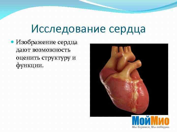 Исследование сердца Изображение сердца дают возможность оценить структуру и функции.
