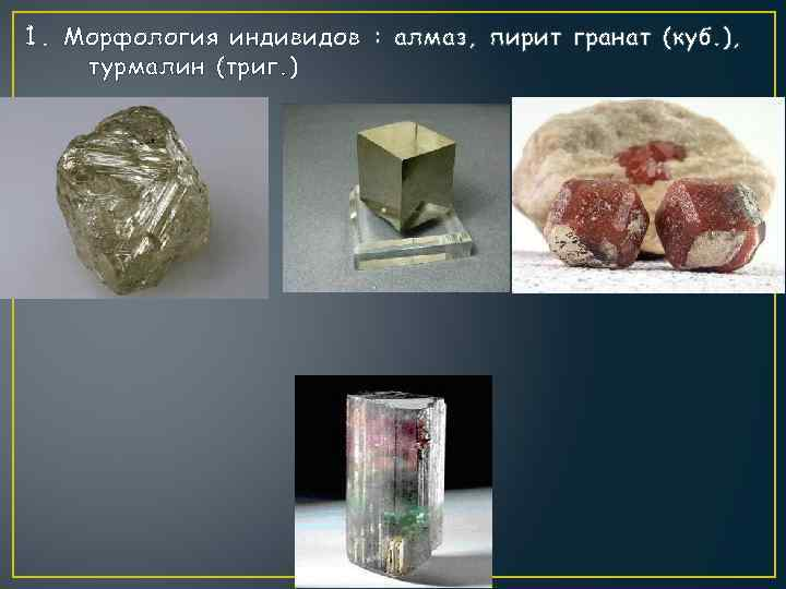 1. Морфология индивидов : алмаз, пирит гранат (куб. ), турмалин (триг. )