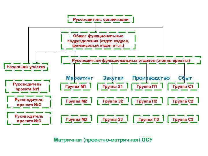 Руководитель организации Общее функциональные подразделения (отдел кадров, финансовый отдел и т. п. ) Руководители