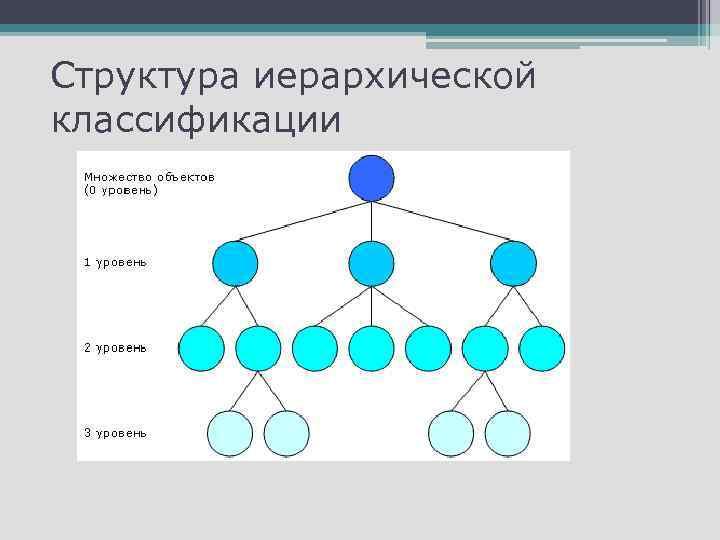 Структура иерархической классификации