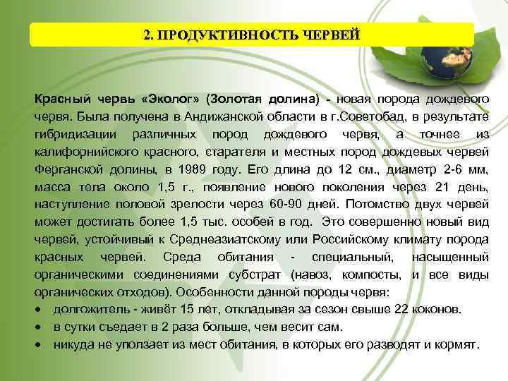 2. ПРОДУКТИВНОСТЬ ЧЕРВЕЙ Красный червь «Эколог» (Золотая долина) - новая порода дождевого червя. Была